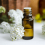 7 Benefits Of Yarrow Essential Oil To Your Health