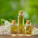7 Amazing Uses And Benefits Of Yarrow Essential Oil